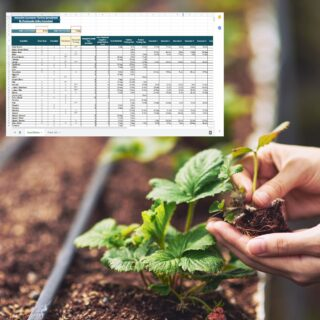 Interactive Succession Planting Spreadsheet - Northern Hemisphere promo image