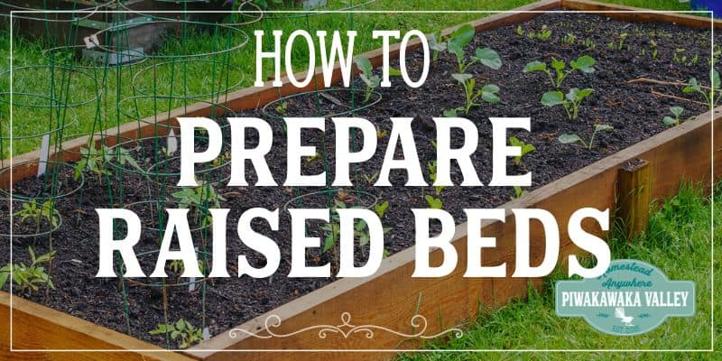 How to prepare a raised garden bed for planting vegetables promo image