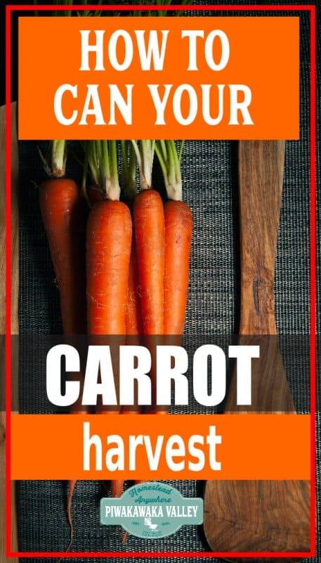 How to pressure can carrots with a step by step video promo image