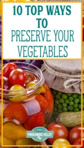 preserving vegetables from the garden promo image