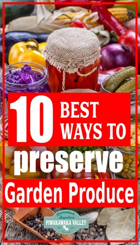 preserving vegetables from the garden pinterest promo image