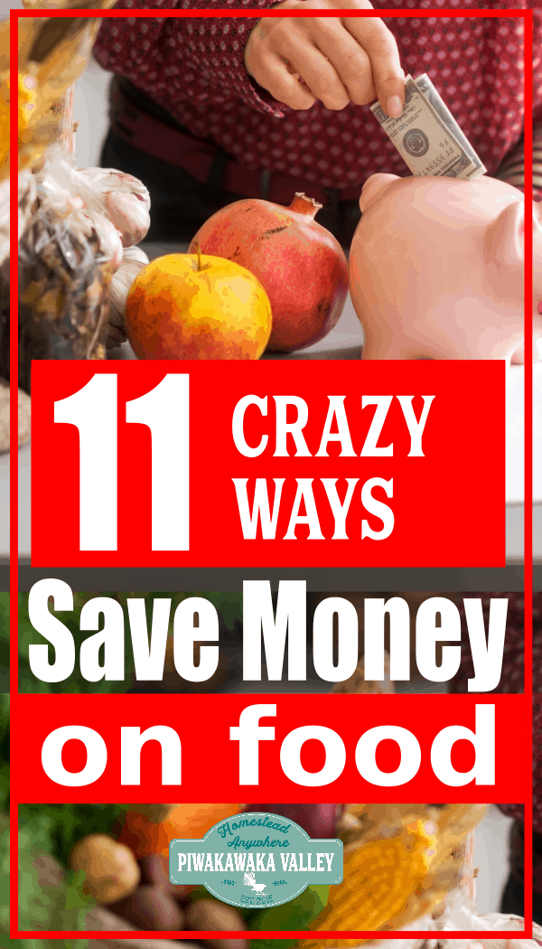 11 Counter intuitive ways to save money on food promo image