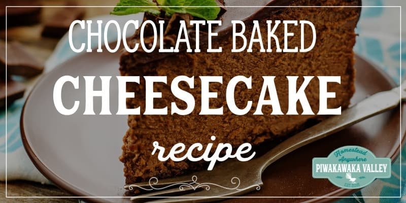 This is simply the best baked chocolate cheesecake recipe with a sponge base. This New York style chocolate cheesecake is gluten free and can easily be made in to a delicious keto dessert option. Bookmark this one for later!