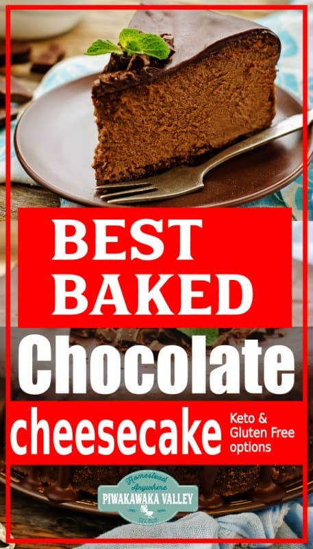 Decadent Chocolate Baked Cheesecake with Sponge Base- Keto variation included promo image