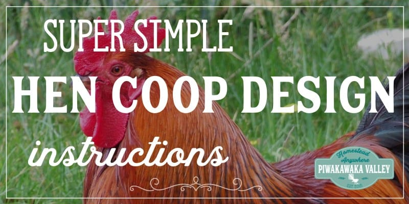 Building a chicken coop with just one sheet of ply wood. promo image