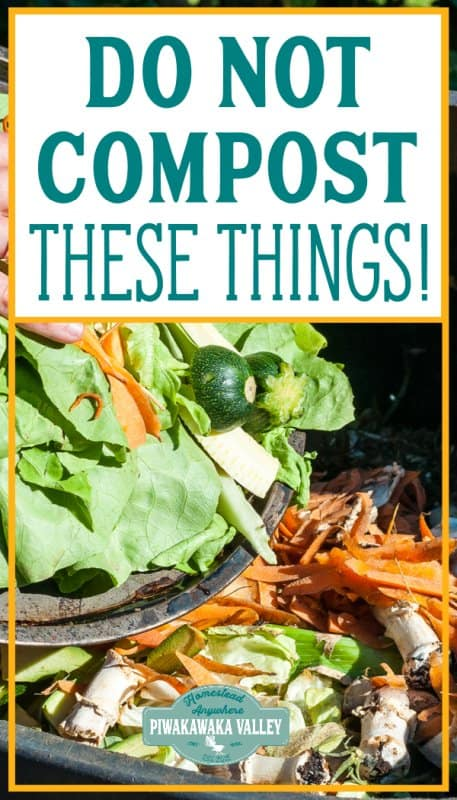 35 Examples of what not to put in compost promo image