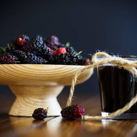 Mulberry Jelly Recipe