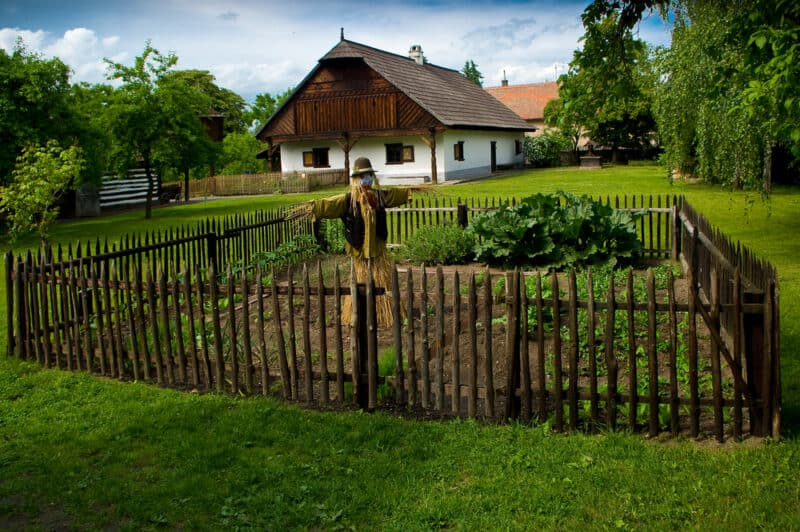Image of self reliant garden and homestead house
