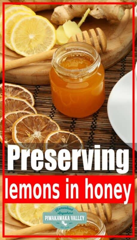 Preserving lemons in honey promo image