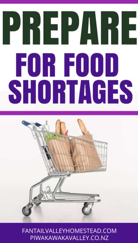 prepare for food shortage pin image